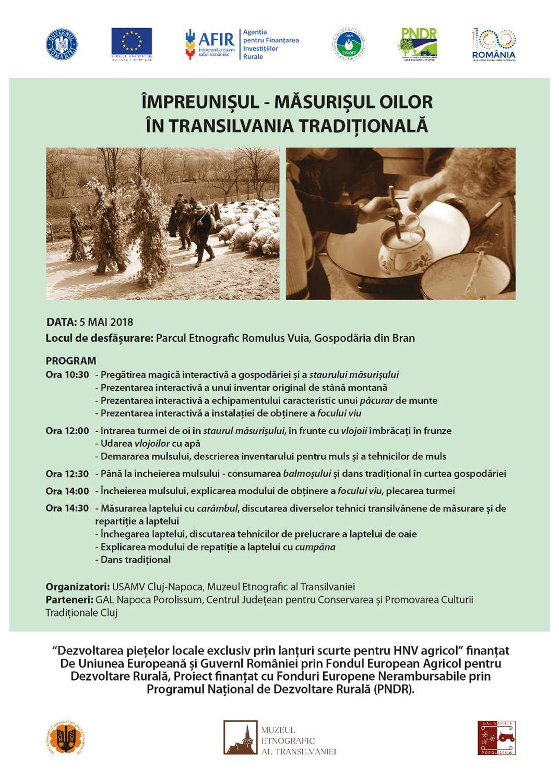 Împreunișul – măsurișul oilor în Transilvania tradițională