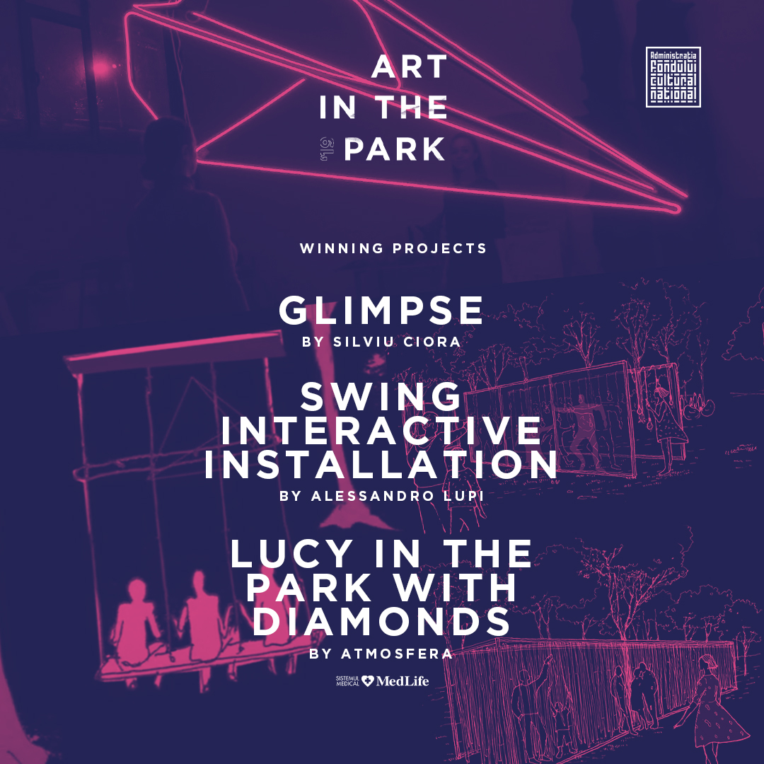 S-au ales câștigătorii concursului Art in the Park