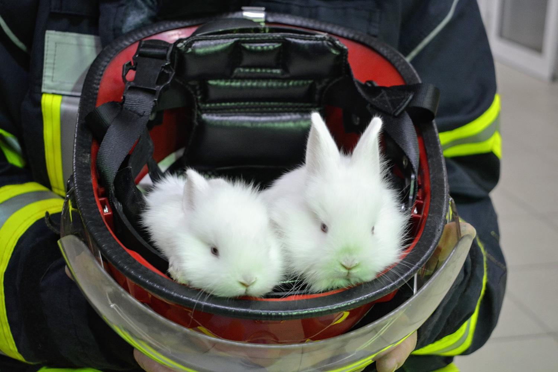 Pompierii clujeni vor fi, zilnic, la datorie în perioada Sărbătorilor Pascale!