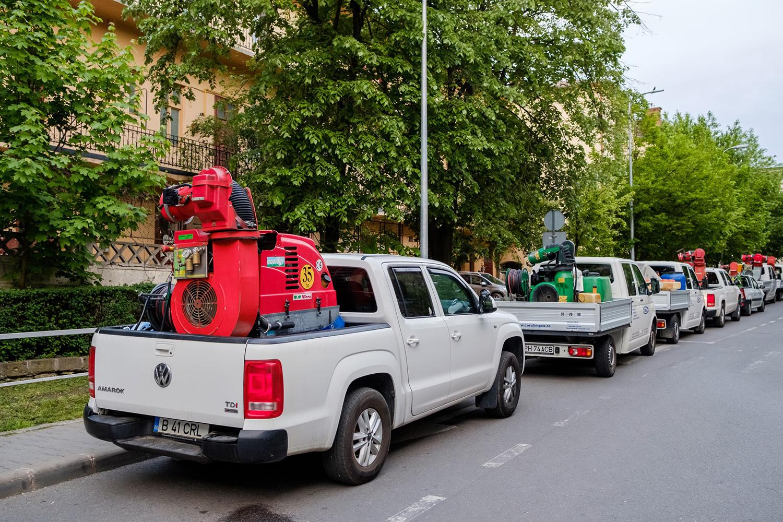 Primăria Cluj-Napoca anunță demararea unei noi acțiuni de dezinsecție pe domeniul public și privat al municipiului Cluj-Napoca